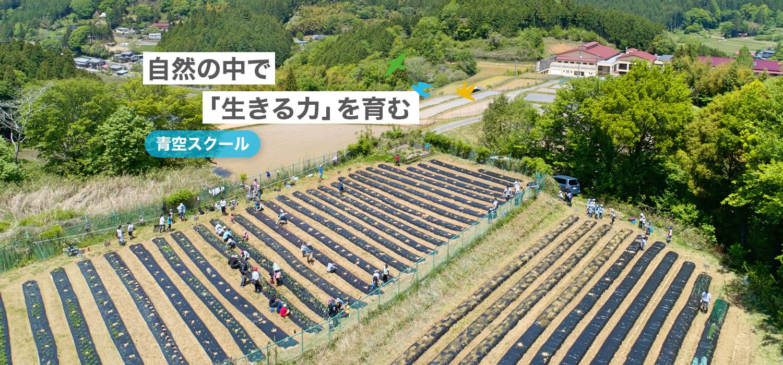 自然の中で「生きる力」を育む 青空スクール 山あいの農園を中心に活動 家族一緒の農業体験コースもあります